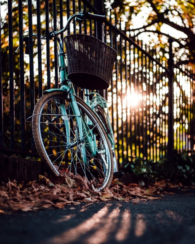 Blue bike with a basket leaning against a fence with sunshine and leaves surrounding